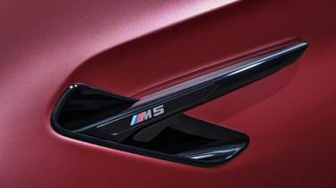 BMW M5 F90 - Plum matte front vent