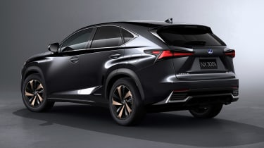 Lexus NX300 - studio rear grey