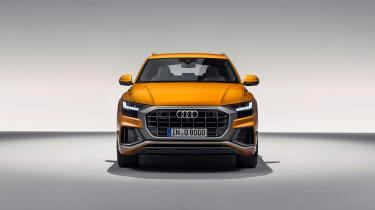 Audi Q8 TDI - nose