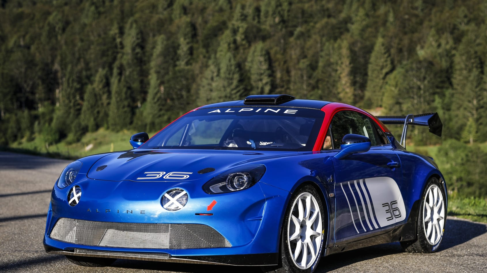 21231359_2019_-_ALPINE_A110_RALLY.jpg