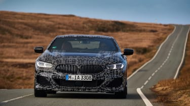 BMW 8-series prototype review - nose