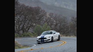 Shelby Mustang GT350 slide