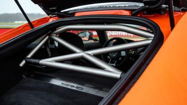 Mercedes-AMG GT Black Series - cage