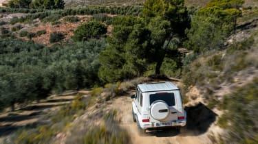 Mercedes-AMG G63 – rear