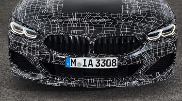 BMW 8-series prototype review - grille