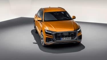 Audi Q8 TDI - static