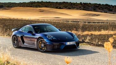 Porsche 718 Cayman GT4 static