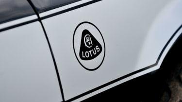 Lotus Sunbeam side stripes