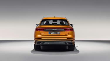 Audi Q8 TDI - tail