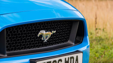 Ford Mustang GT - Grille