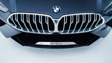 BMW 8-series concept - grille